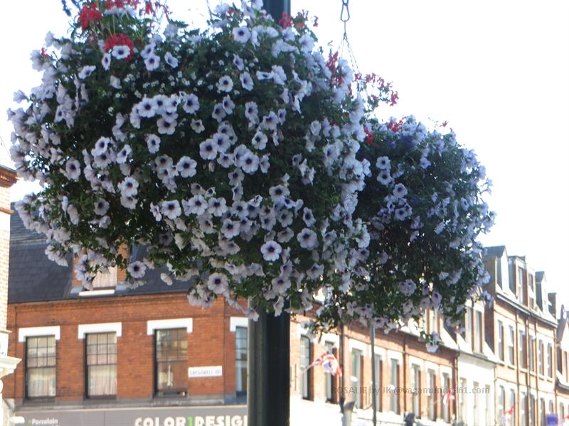 richmond-london-vagamundo361- (41)