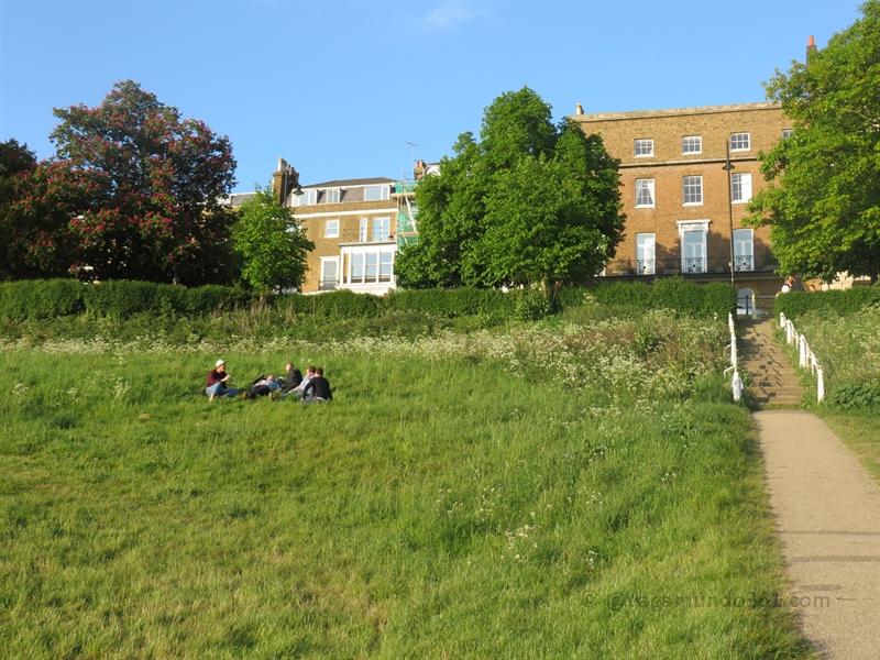 Richmond Terrace Field